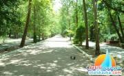 Курортный парк в городе Саки